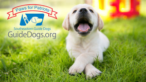 Fundraiser: Paws for Patriots